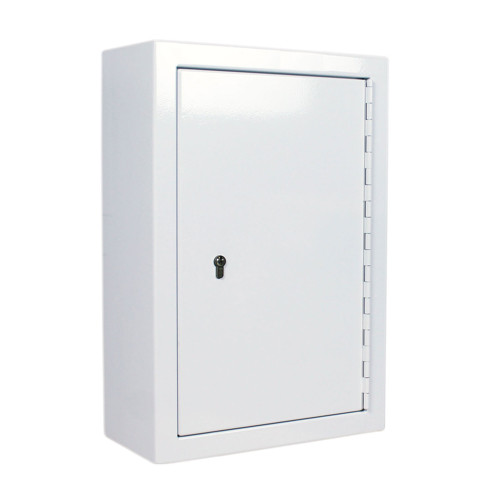 FPD 12366 controlled drug cabinet 48 litre with closed door